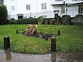 A wet and windy churchyard at St Mary's, Guildford - geograph.org.uk - 1080602.jpg