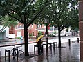 A wet day in Boston (898102082).jpg