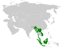 Abroscopus superciliaris distribution map.png