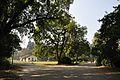 Acharya Jagadish Chandra Bose Indian Botanic Garden - Howrah 2011-01-08 9823.JPG