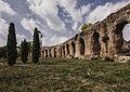 Acquedotto alessandrino - Roma.jpg
