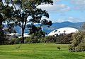 Adelaide Oval Shells (20883615844).jpg