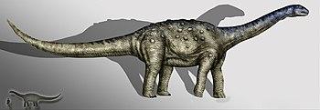 Aeolosaurus copia.jpg