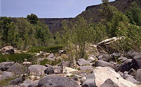 A photo showing rocks and trees along the Agua Fria River