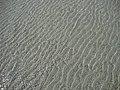 Aguas claras e cristalinas.jpg