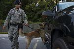 Airman's best friend—the military working dog 160816-F-CC297-0243.jpg