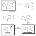 Alcaloides carbolínicos indólicos de Nitraria.png