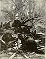 All about animals. Facts, stories and anecdotes (1900) (14591436550).jpg