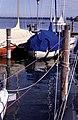 Allensbach 1992 06.jpg