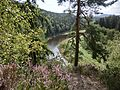 Alpensteig 2 - panoramio.jpg