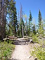 Alpine Pond Trail at Cedar Breaks - panoramio.jpg