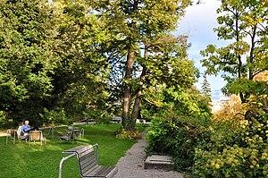 Old Botanical Garden, Zürich - Western parts of the gardens
