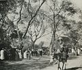 An Avenue in Cairo. (1911) - TIMEA.jpg