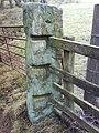 Ancient Gatepost - geograph.org.uk - 635534.jpg