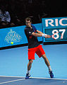 Andy Murray backhand (8155692116).jpg