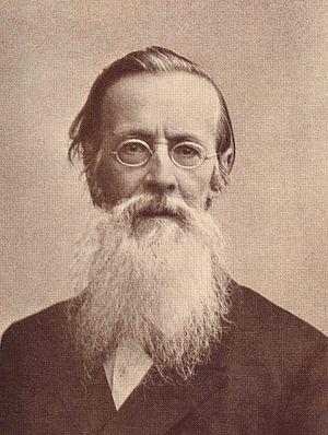 Apollon Maykov - Maykov in his later years