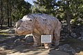 Apsley NSW 2820, Australia - panoramio (9).jpg
