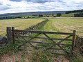 Arable land turns to moor from Bents Road - geograph.org.uk - 848399.jpg