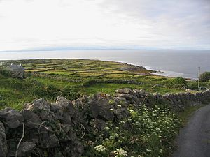 Aran Islands - Inishmore.