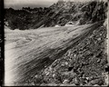 Arapaho Glacier, photo X13.tif