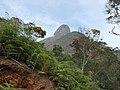 Araras, Petrópolis - RJ, Brazil - panoramio (27).jpg