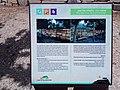 Ariel Sharon Park (15).jpg
