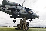 Army Air Corps Reserves train with Wildcat helicopters MOD 45164383.jpg