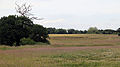 Art earthwork landscape sculpture Woodland Trust Theydon Bois Essex 14.JPG