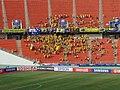 Asian Cup Australia-Iraq III.jpg