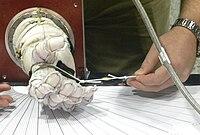 Astronaut glove challenge.2