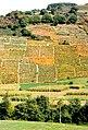 Asturias 1979 09.jpg