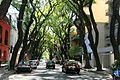 Avenida Guatemala, en Palermo, Buenos Aires, Argentina (2344173806).jpg