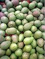 Avocados, foto av alers.jpg