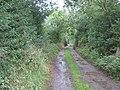 Aycliffe Lane Mordon - geograph.org.uk - 1461186.jpg