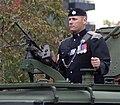 BCR mounted gunner.JPG