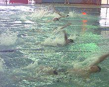شائعة أنا أحسب حالة موضوع عن السباحه بالانجليزي Sjvbca Org