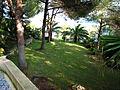Backyard (356321233).jpg