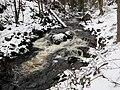 Bad-Harzburg Ecker-unterhalb-Talsperre Feb-2016 IMG 7225.JPG