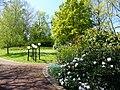 Bad Sassendorf – Kurpark - panoramio - giggel.jpg
