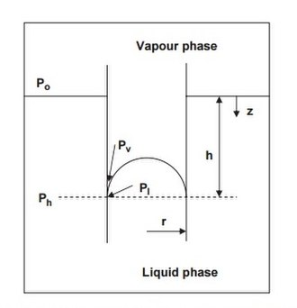 Kelvin equation - A system containing a pure homogeneous vapour and liquid in equilibrium. In a thought experiment, a non-wetting tube is inserted into the liquid, causing the liquid in the tube to move downwards. The vapour pressure above the curved interface is then higher than that for the planar interface. This picture provides a simple conceptual basis for the Kelvin equation.