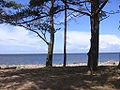 BalticSea-GulfOfRiga-EstonianCoast.jpg