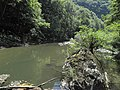 Banat, Nera Canyon - panoramio (63).jpg