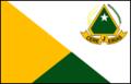 Bandeira Cerejeiras.png
