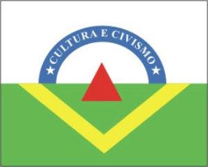 Viçosa, Minas Gerais - Image: Bandeira viçosa