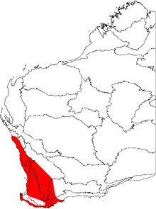 A map of the biogeographic regions of Western Australia, showing the range of Banksia sessilis. It occupies the southwestern corner of Australia.
