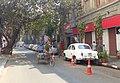 Banyan over Waterloo Street (14653953039).jpg