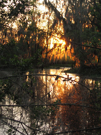 Jean Lafitte National Historical Park and Preserve - Sunset in Barataria Preserve, Louisiana