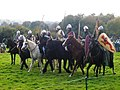 Battle of Hastings reenactment 2017 3.jpg