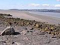 Beach at Blackstone Point - geograph.org.uk - 1230285.jpg
