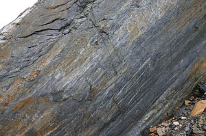 Slickenside - Slickensides on a fault plane, south wall of Bear Valley Strip Mine. Lens cap 5.8cm wide.
